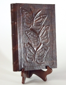 Photo of Butterflies book