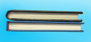 Photo of comparison between rounded and flat spines