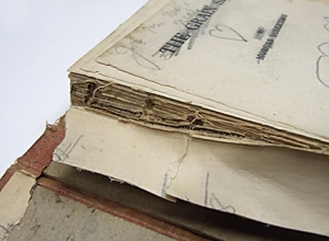 Photo of Old Book Disection #2
